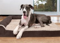 6 Best Dog Beds For Large Breeds – 2021 Reviews & Buying Guide