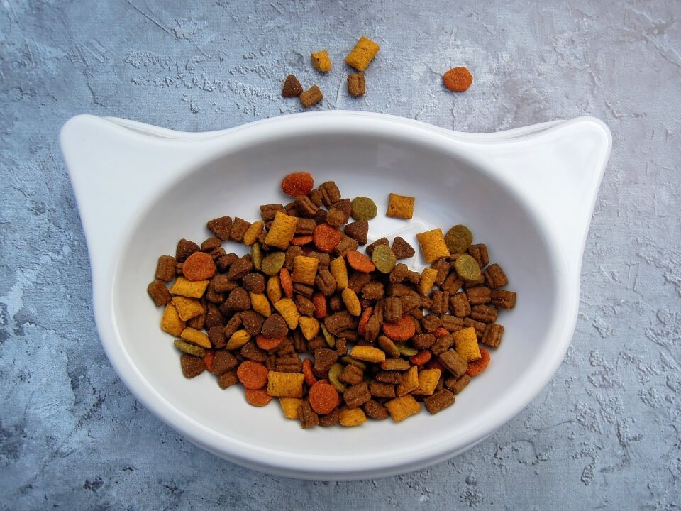 Best Dry Cat Food For Senior Cats - Image 1