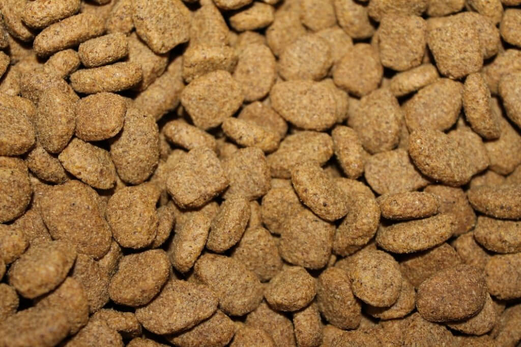 Best Dog Food For French Bulldogs - Image 2