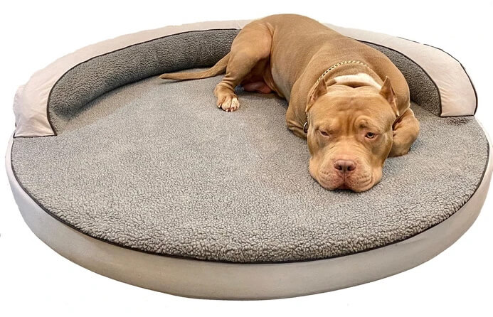 Dog laying on Bully Beds Round Sherpa Top Bolster Bed
