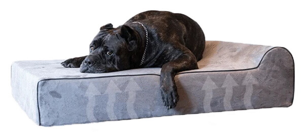 Bully Beds Infrared Dog Bed
