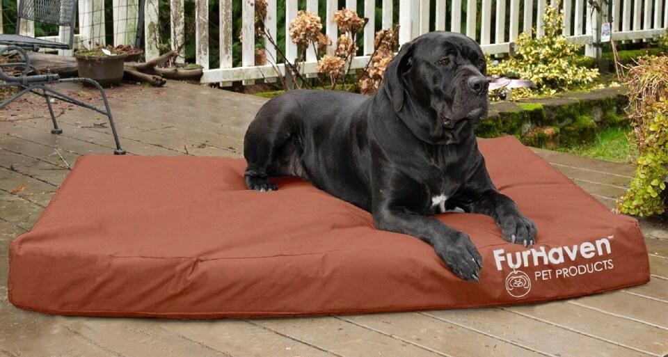 FurHaven Deluxe Indoor/Outdoor Mattress Bed with big black dog