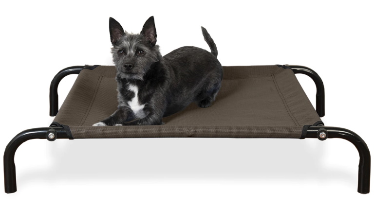 FurHaven Elevated Reinforced Cot Bed - small dog lying on top