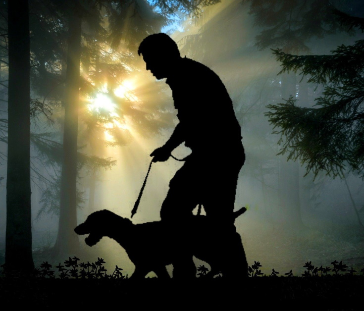 Silhouette of a man and a dog on a leash