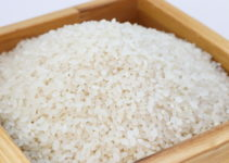 Can Cats Eat Rice? – Explained